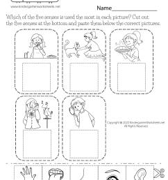 five sense worksheet [ 1035 x 800 Pixel ]