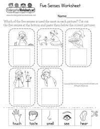 Five Senses Worksheet for Kids - Free Kindergarten ...