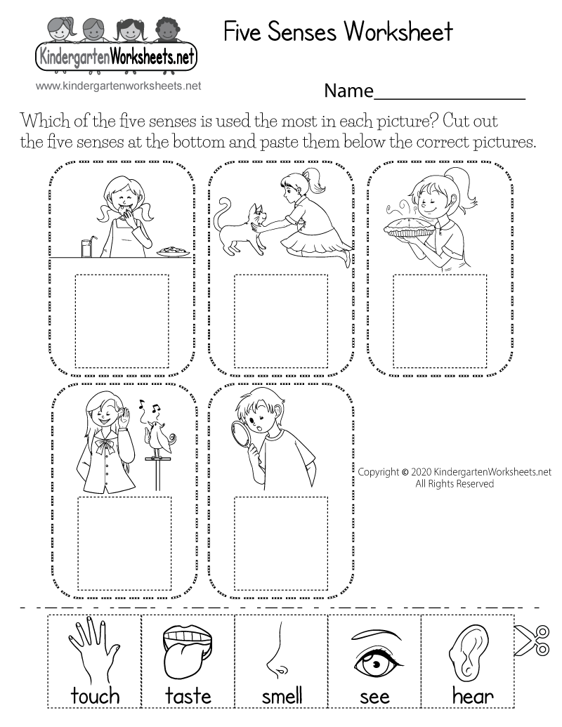 hight resolution of five sense worksheet