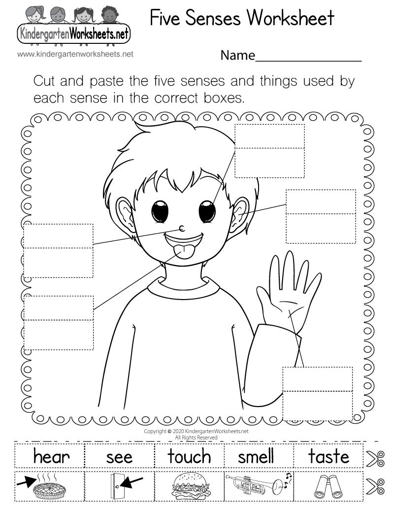 Five Senses Worksheet For Kindergarten Free Printable