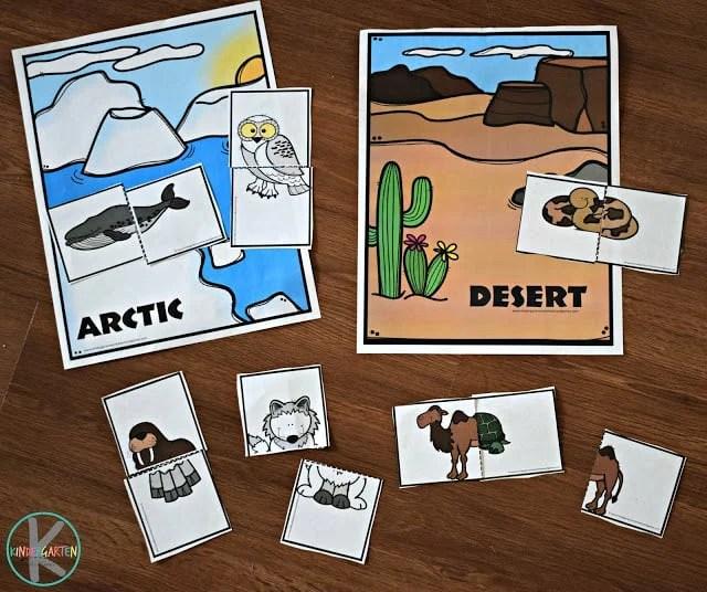 Create Newsletter Theme Preschool