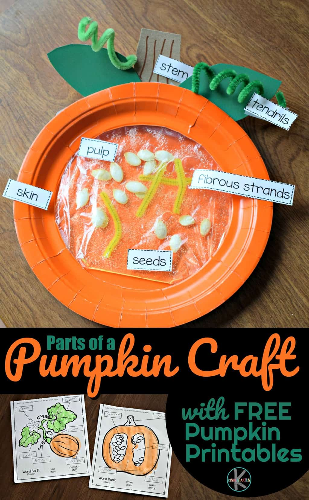 Cute Parts Of A Pumpkin Craft Amp Free Parts Of A Pumpkin