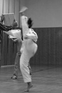 600px-Taekwondo_Taifun