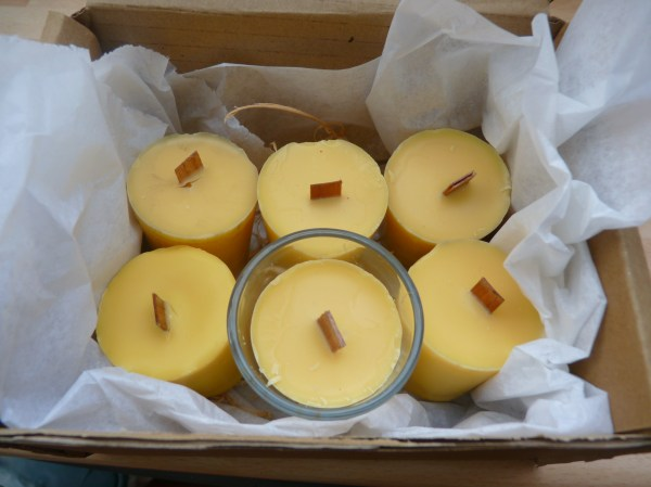 Flyaway Citronella Votive Candles - Box Of 6 Kindlecone