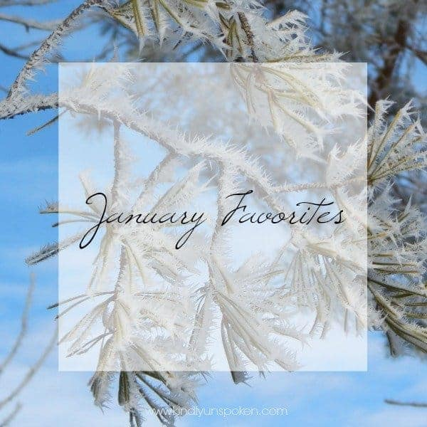 January Favorites Kindly Unspoken