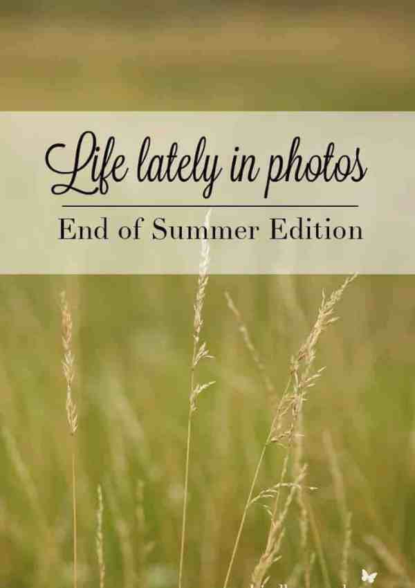 Life Lately in Photos- End of Summer '17