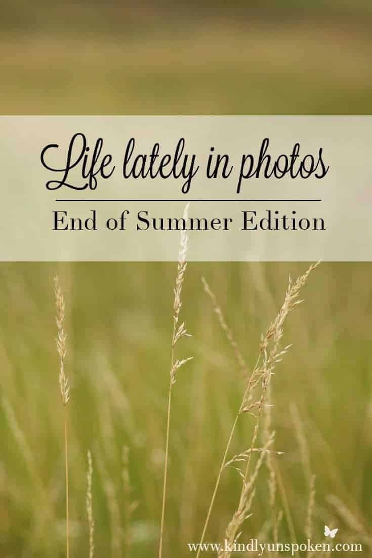 Life Lately in Photos- End of Summer '17 Edition