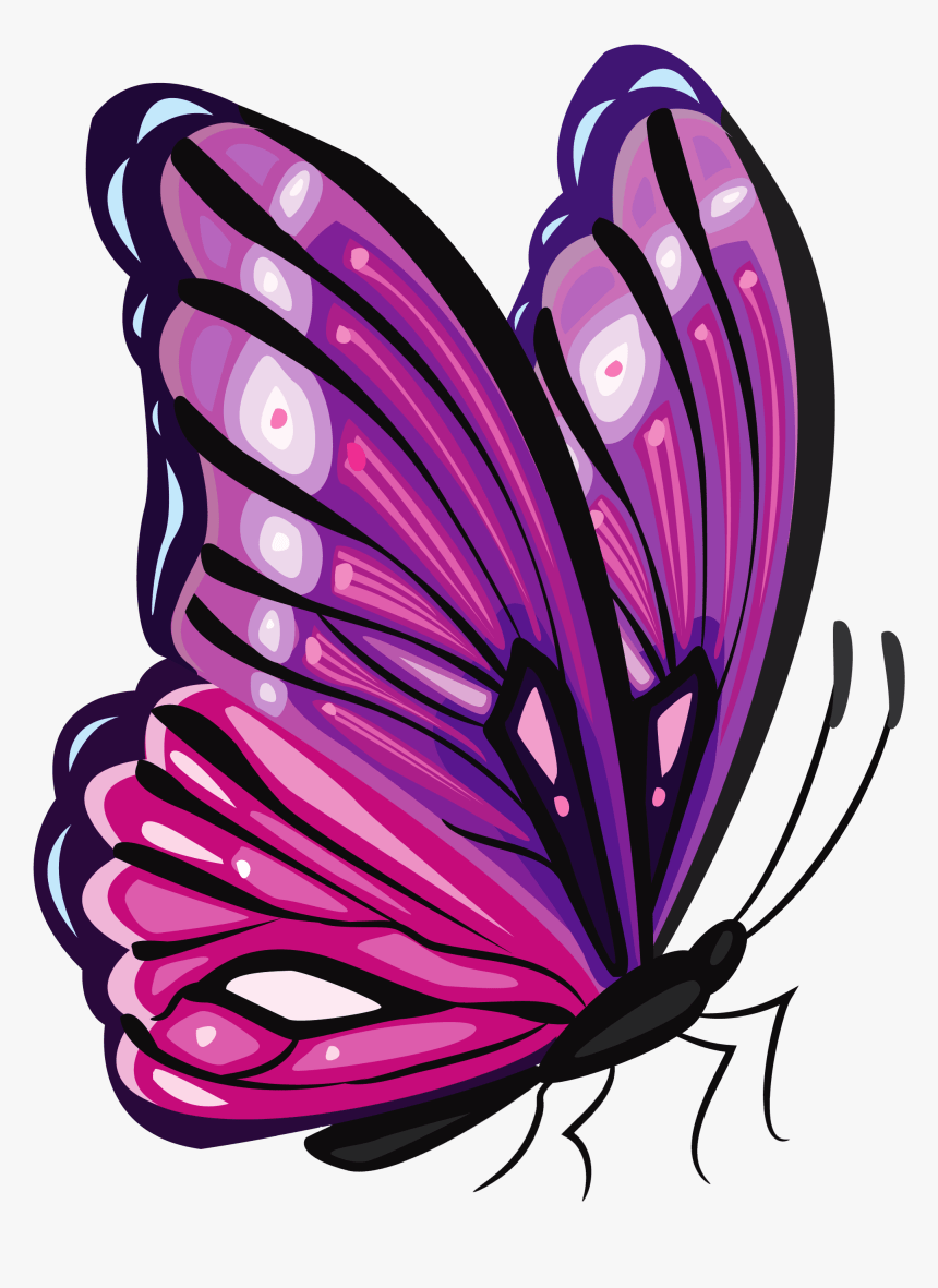 Purple Butterfly Png Clipart Transparent Png Kindpng