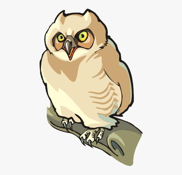 Snow Owl Png Free Owl Clipart Clip Art Front Facing Owl Transparent Png Kindpng