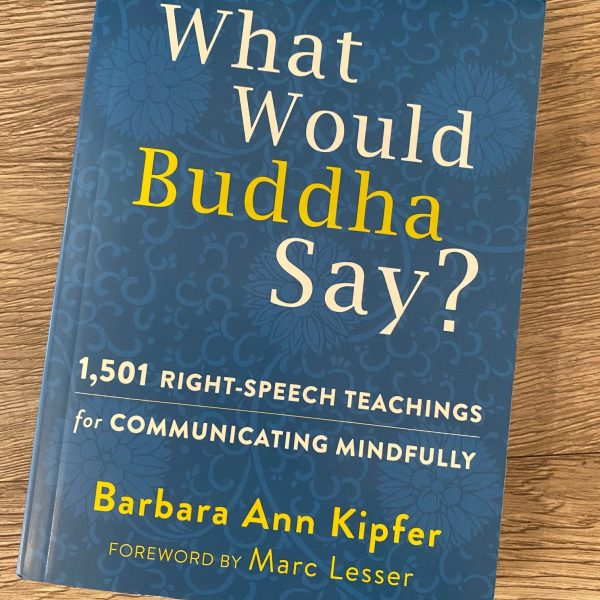 WHAT WOULD BUDDHA SAY? BOOK