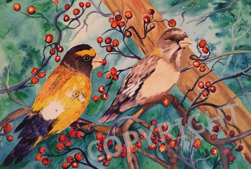 2-birds-berries-watercolor-carol-artis