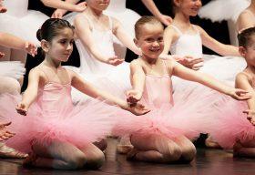 Centro studi danza e movimento