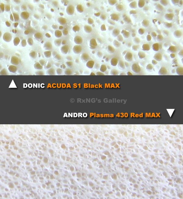 Sponge_Pores