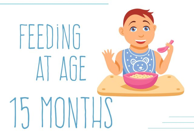 The Baby's Diet of 15 months