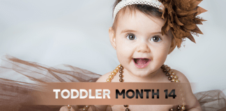 Toddler Month By Month- (Month 14)