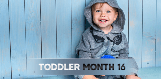 Toddler Month By Month - (Month 16)