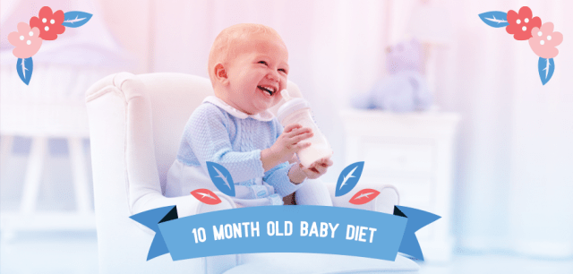 10 Month Old Baby Diet