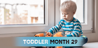 Toddler - Month 29