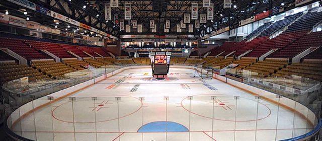 Skating and Hockey