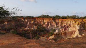 Photo Gallery Safari Kenya Watamu 2020 24