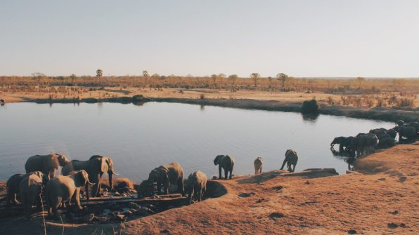 Safari Safaris And Excursions Kenya 2020 Safari ed Escursioni In Kenya 2020 safaris kenya watamu Excursions Safari 3 Tage Amboseli und Tsavo Ost Safari 3gg Amboseli e Tsavo Est Amboseli And Tsavo East