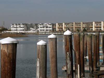 Avalon Bayfront