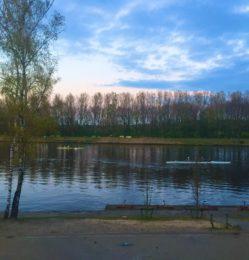 Tilburg 2019 (1)