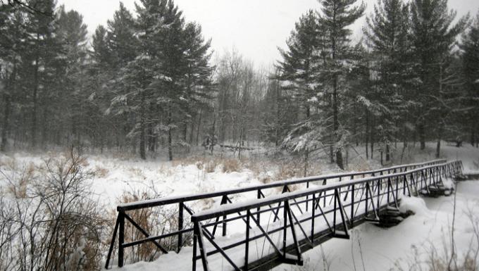 Best Trail in Kingston for a Winter Walk, Ontario