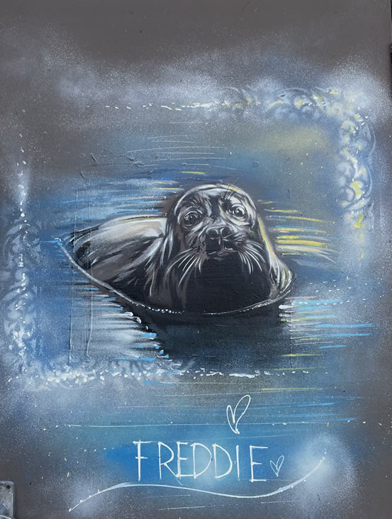Freddie The Seal Artwork Surbiton