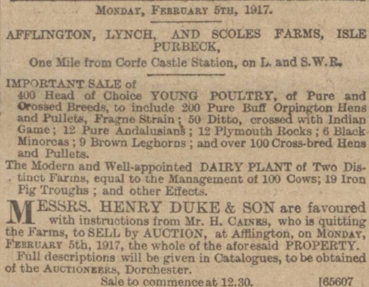 caines quit sale wg 26.01.1917