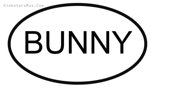 BUNNY Oval Vinyl Decal