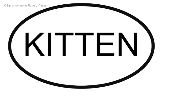KITTEN Oval Vinyl Decal