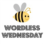 The BE Society Wordless Wednesday #49 – 18/6/14
