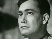Далёкая невеста(1948)
