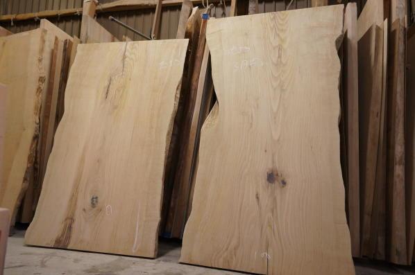 椎の木一枚板