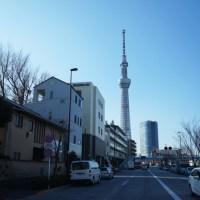 天然木を東京都へ