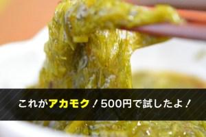 これがアカモク!500円で試したよ!