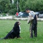 Sporthund-IPO