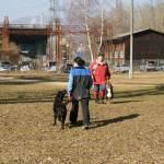 begegnunghund