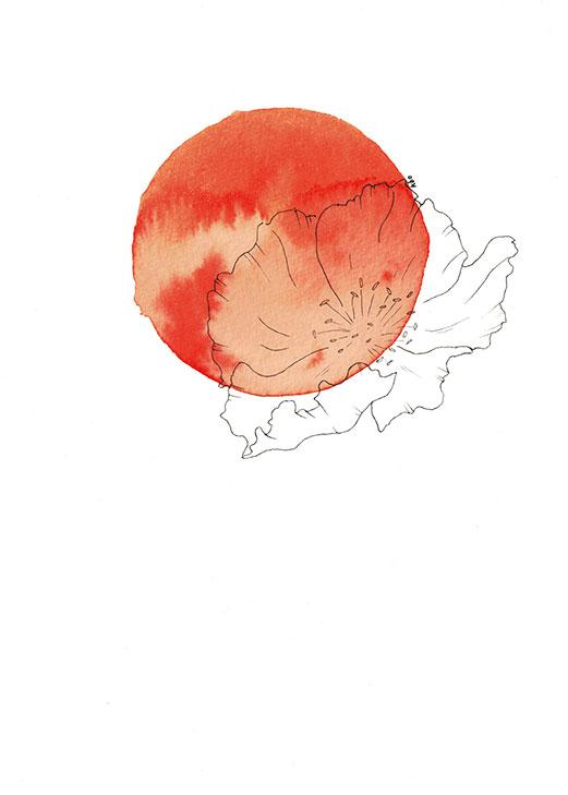 Bloom #1 - Illustration by Kira Bang-Olsson