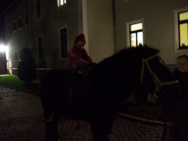 Martinsfest Sohland3