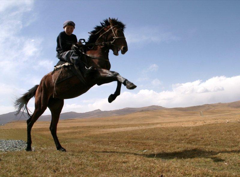 chevauchee-kirghize-1