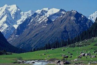 prairie-et-glacier-pic-karakol-2