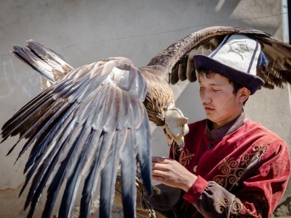 homme avec un aigle