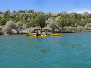 Sea Kayak &. Rafting
