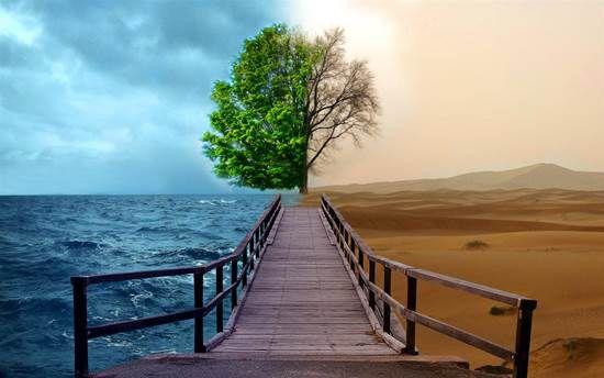 ekoloji ile ilgili görsel sonucu