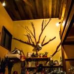 飛騨高山ゲストハウス tauさんに泊まって周遊し絶品グルメに出会った