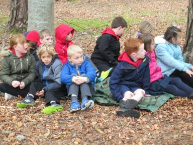outdoor learning in the woods 046