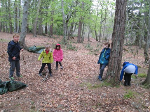 outdoor learning in the woods 053