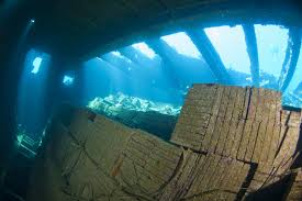 Tile Wreck in the Red Sea